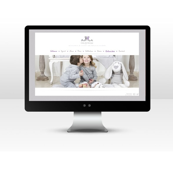 Conception de site web marchand